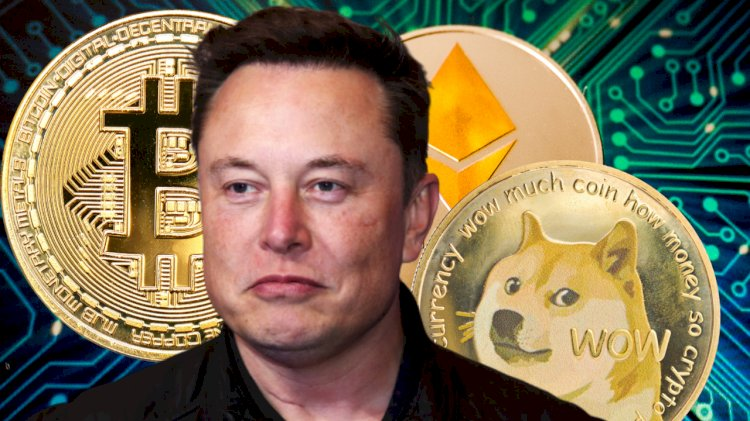 Elon Musk Reveals Spacex Owns Bitcoin, He Personally Owns BTC, Ethereum, Dogecoin — 'I Might Pump but I Don't Dump'
