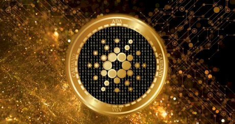 Cardano Successfully Deploys Alonzo HFC, But Why Is Price Down?
