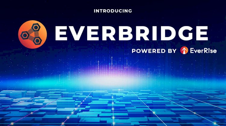 EverRise Brings Buyback Token and Ecosystem of dApps to Polygon and Ethereum